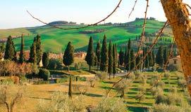 Toscaans landschap Stock Fotografie