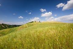 Toscaans landschap dichtbij Certaldo (Florence, Italië) Stock Afbeeldingen