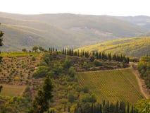 Toscaans landschap die wijngaarden tonen Stock Foto
