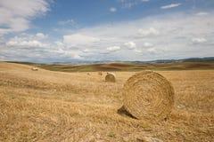 Toscaans landschap in Val-d'Orcia (Siena, Italië) Royalty-vrije Stock Afbeeldingen