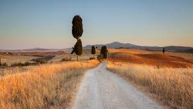Toscaans platteland bij zonsondergang, Italië Royalty-vrije Stock Afbeeldingen