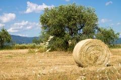 Toscaans platteland met een baal van hooi Royalty-vrije Stock Afbeelding