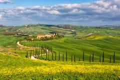 Toscaanse kromme Royalty-vrije Stock Afbeeldingen