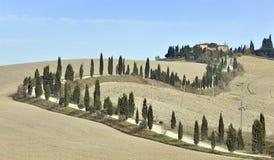Toscaanse villa en cipresbomen stock foto's