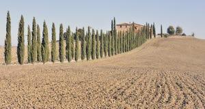 Toscaanse villa en tree-lined weg stock fotografie