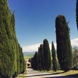 Toscana Италия Стоковые Фотографии RF