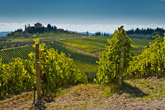 Toscana Stock Image