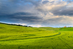 Toscana Fotografia de Stock Royalty Free