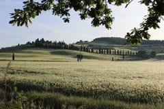 Toscana Стоковые Фотографии RF
