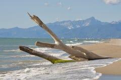Toscana abandonó la playa de la arena y el paisaje de las montañas Fotografía de archivo libre de regalías