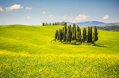 Toscana en la primavera Foto de archivo