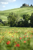 Toscana House style on Meadow in tuscany Stock Images