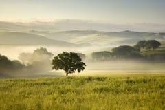 Toscana (Italia) Imagenes de archivo