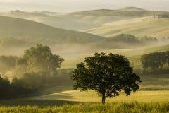 Toscana (Italia) Foto de archivo