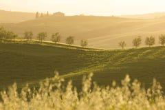 Toscana (Italia) Imagen de archivo libre de regalías
