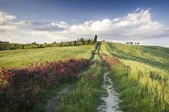 Toscana (Italia) Imágenes de archivo libres de regalías