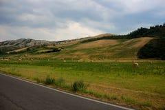 Toscana, Italy. Italian road in Toscana region stock images