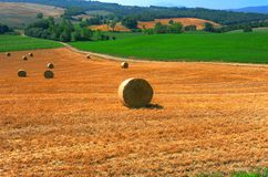 Toscana Landscape Royalty Free Stock Photo