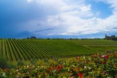 Toscana landskap Royaltyfri Fotografi