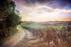 Toscana landskap Arkivbild