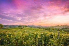 Toscana landskap Royaltyfri Foto