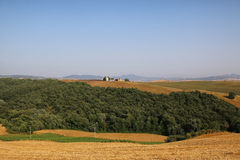 Toscana - Montalcino Стоковое фото RF