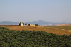 Toscana - Montalcino Стоковые Изображения