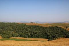 Toscana - Montalcino. Toscana someday in summer Italy Royalty Free Stock Photo