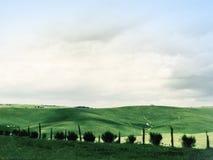 Toscana natur Arkivfoton