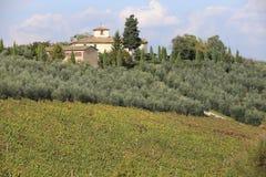 Toscane Obrazy Royalty Free