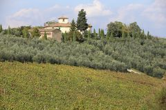 Toscane Royalty Free Stock Images
