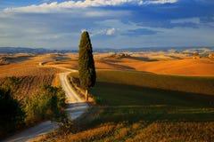 Toscanië Stock Afbeelding