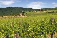 Toscanië royalty-vrije stock afbeeldingen