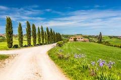 Toscanië bij de lente Stock Fotografie