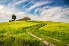 Toscanië bij de lente Stock Afbeelding