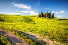 Toscanië bij de lente Stock Foto's
