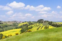 Toscanië in de lente Royalty-vrije Stock Afbeeldingen