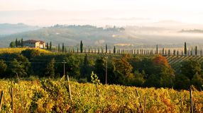 Toscanië in de Mist Stock Foto