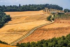 Toscanië: de weg aan Torre een Castello Stock Afbeeldingen