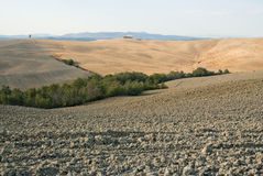 Toscanië - Kreta Senesi Stock Afbeeldingen