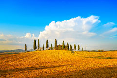 Toscanië, landbouwgrond, cipresbomen en witte weg. Siena, Val D of royalty-vrije stock foto's