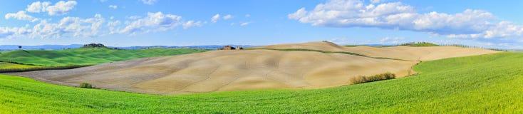 Toscanië, landelijk landschap. Rolling heuvels, plattelandslandbouwbedrijf, boom Stock Afbeelding