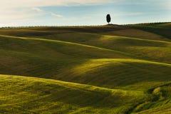 Toscanië, landschap in centraal Italië royalty-vrije stock afbeeldingen