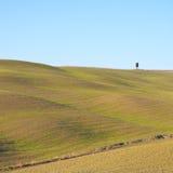 Toscanië, landschap. Rolling heuvels en een boom. Stock Foto