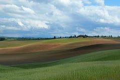 Toscanië in Mei Royalty-vrije Stock Afbeeldingen