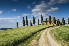 Toscany Fotografering för Bildbyråer