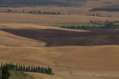Toscany fält i sommar Arkivfoton
