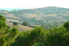 Toscanylandschap Stock Afbeelding