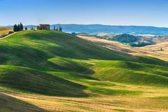 Toskański lato na polach w pięknym widoku Obraz Royalty Free
