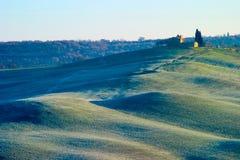 Toskańscy cyprysowi wzgórza Siena obrazy royalty free
